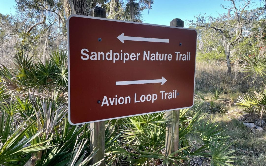 Skidaway Island State Park | Explore Trails, See Wildlife & Kayaking
